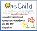 Wyoming County Human Services